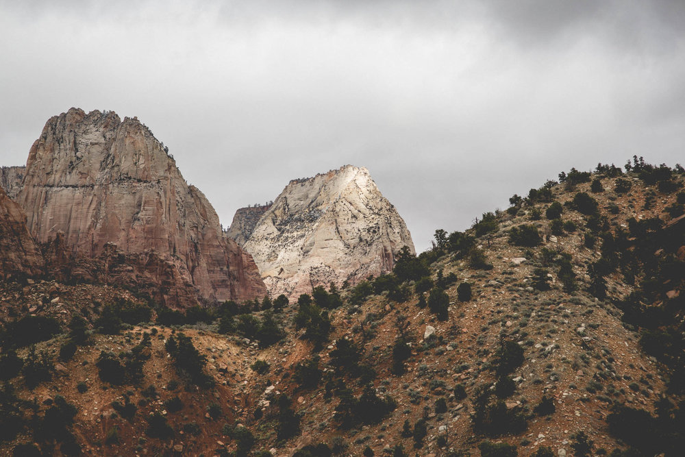 06.  ROCKSTEADY COVENANT [Leah+Jarvis 3rd Anniversary (Zion UT)]-JARV0063.jpg