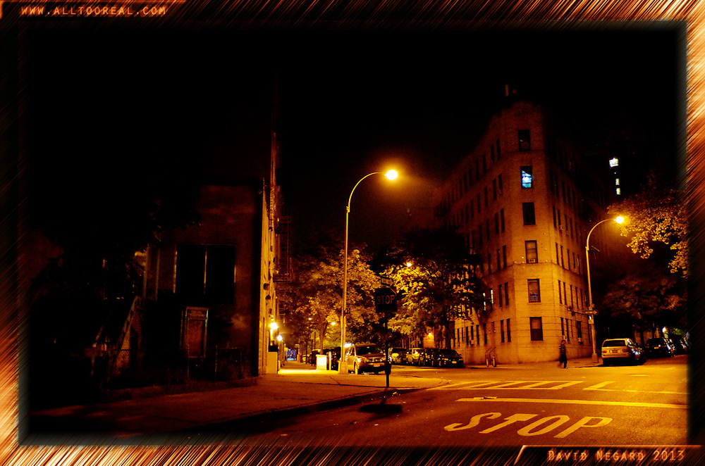 Bronx, New York 2013 / 紐約市布隆克斯區2013年