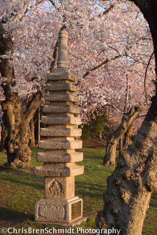 japanese-pagoda