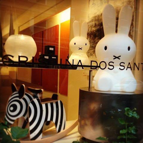 Zebra_NYC_Cristina Dos Santos Design.jpg