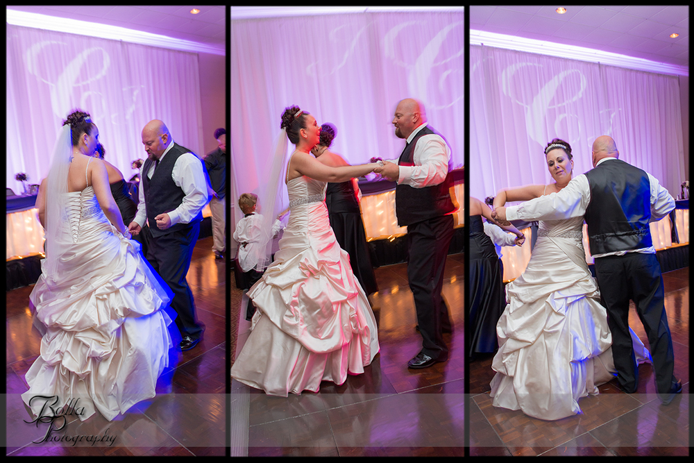 015_wedding_reception_columbia_il_falls_bride_groom_dance.jpg