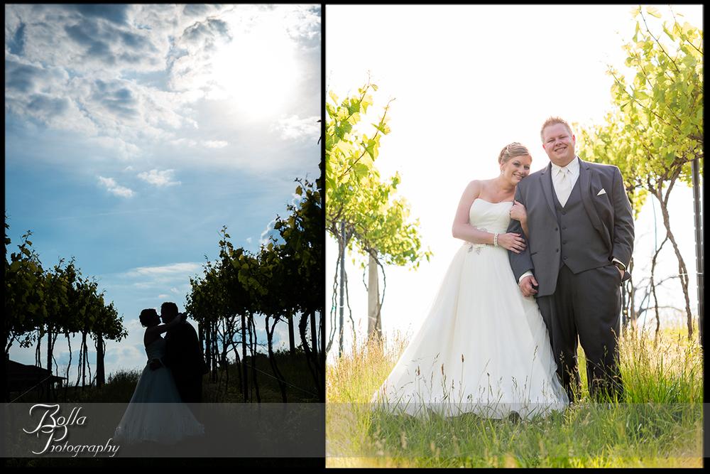 014-villa-marie-winery-maryville-il-wedding-groom-bride-outdoor-portrait-vineyard-sunny-silohuette.jpg