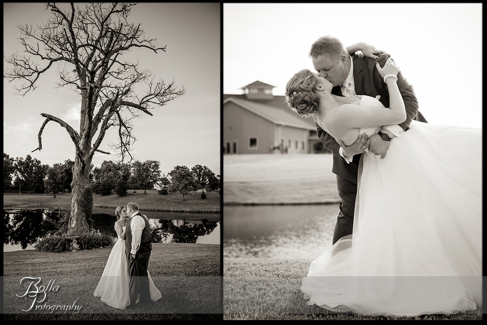 015-villa-marie-winery-maryville-il-wedding-groom-bride-outdoor-portrait-tree-kiss-dip.jpg