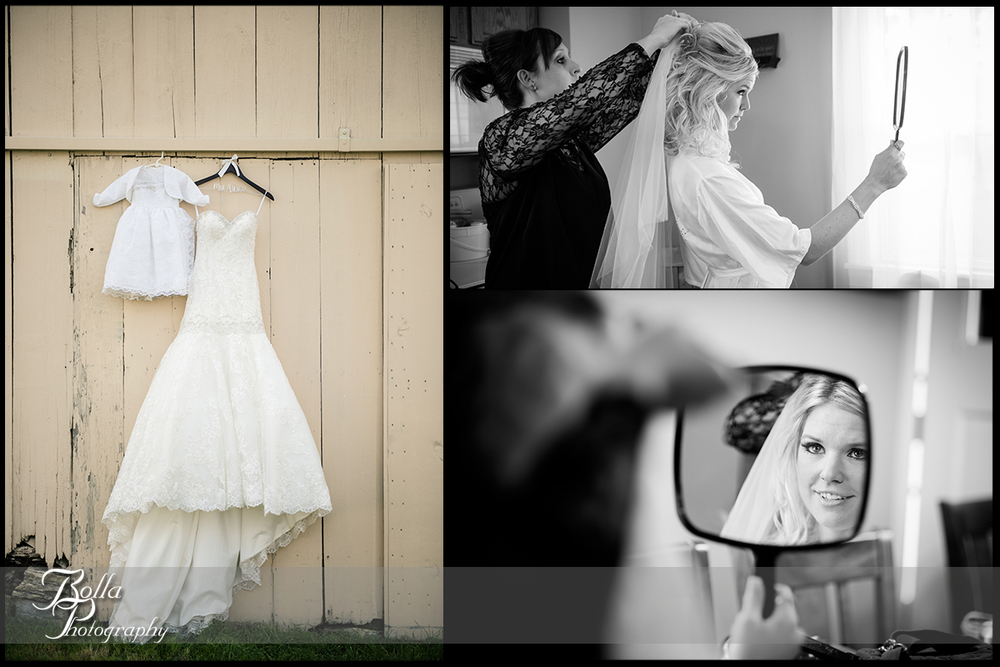 002-Bolla-Photography-wedding-Germantown-IL-bride-preparations-dress-hair-veil-mirror-barn-Albers.jpg