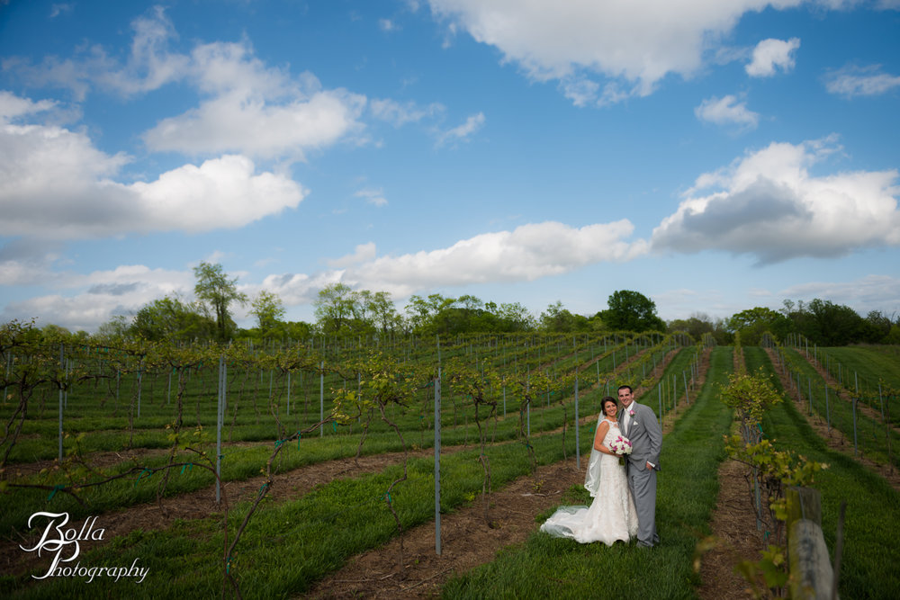 Bolla_Photography_St_Louis_wedding_photographer_Villa_Marie_Winery-0003.jpg