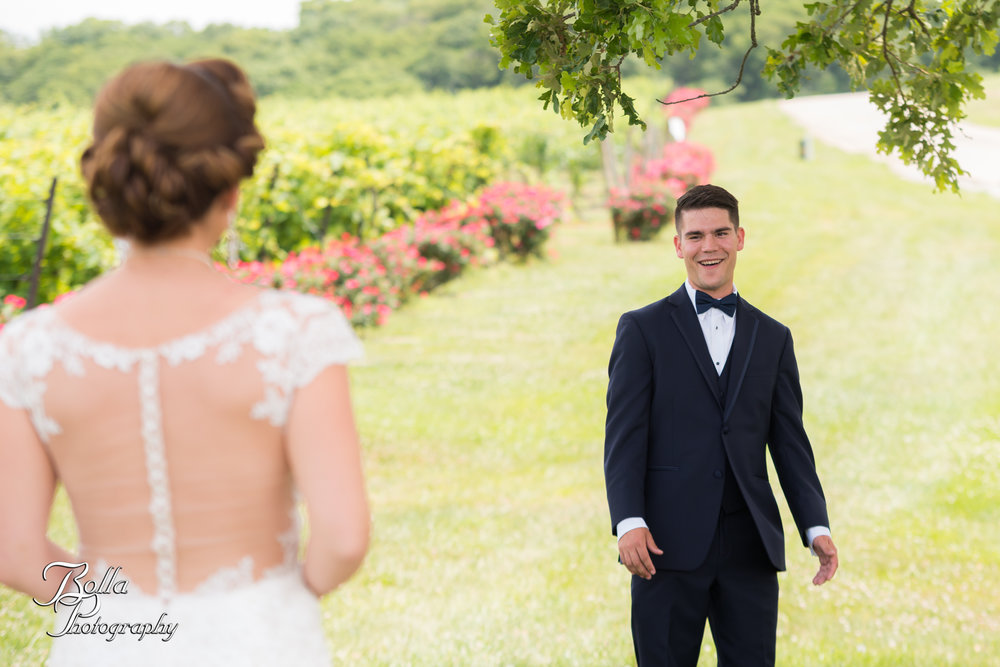 Bolla_photography_edwardsville_wedding_photographer_st_louis_weddings_Chaumette_winery_Mikusch-0128.jpg