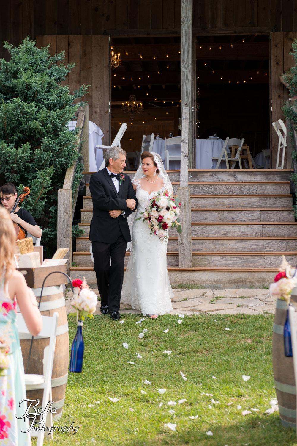 Bolla_photography_edwardsville_wedding_photographer_st_louis_weddings_Chaumette_winery_Mikusch-0342.jpg