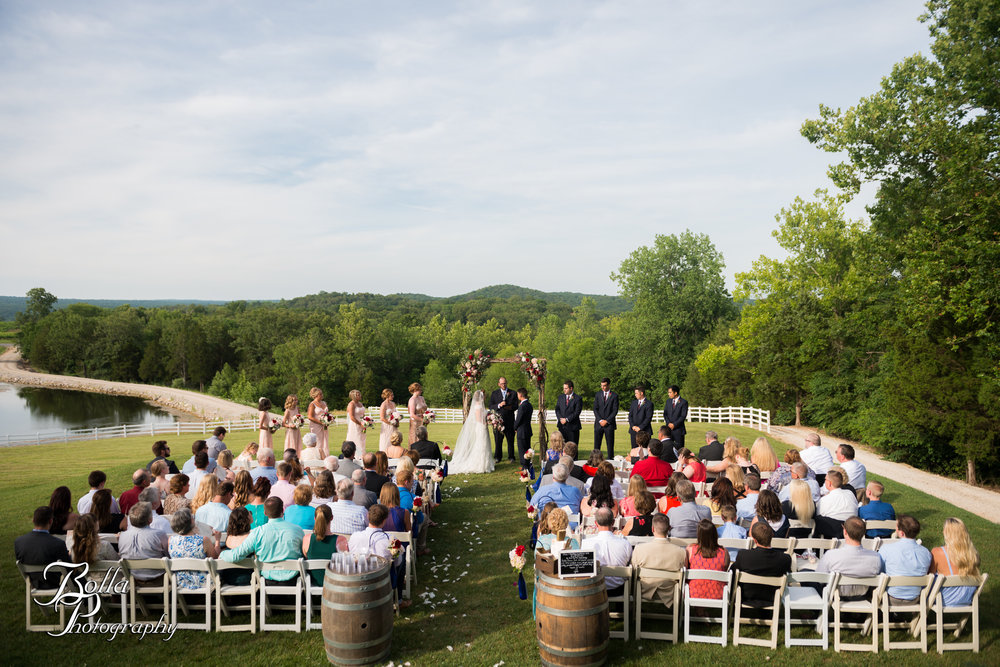 Bolla_photography_edwardsville_wedding_photographer_st_louis_weddings_Chaumette_winery_Mikusch-0385.jpg