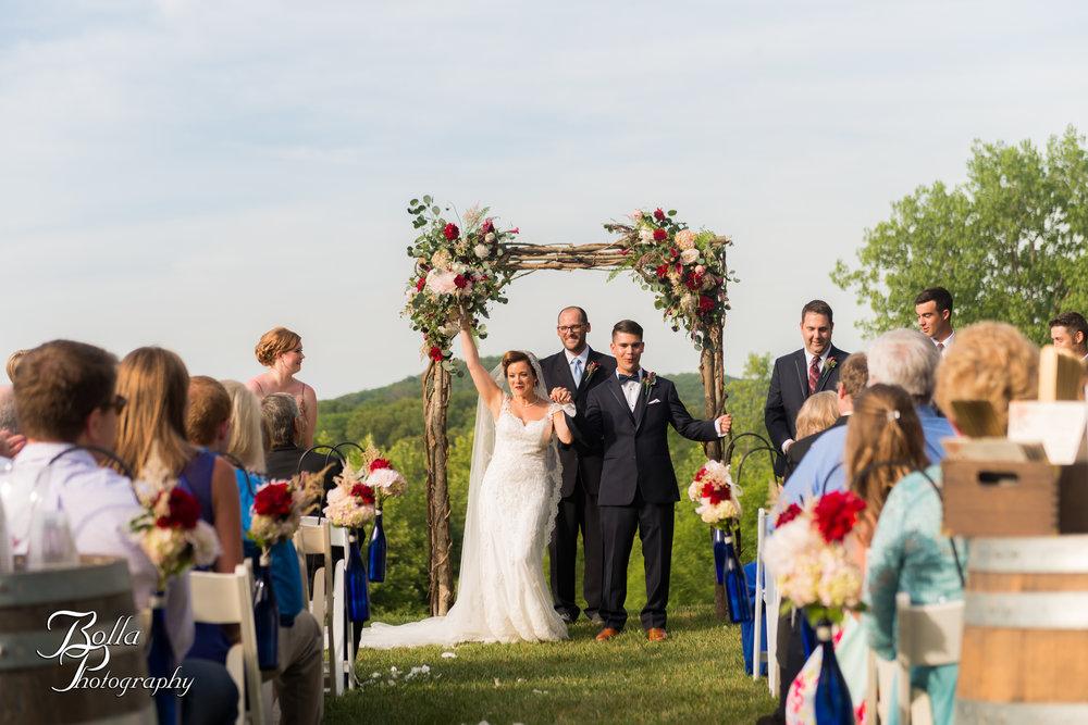 Bolla_photography_edwardsville_wedding_photographer_st_louis_weddings_Chaumette_winery_Mikusch-0420.jpg