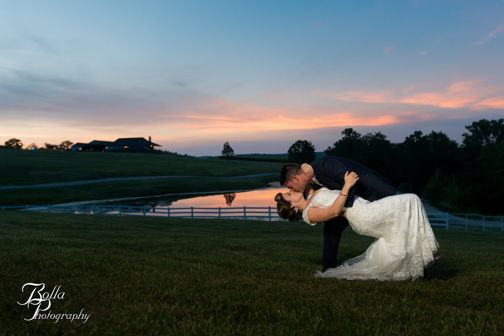 Bolla_photography_edwardsville_wedding_photographer_st_louis_weddings_Chaumette_winery_Mikusch-0467.jpg