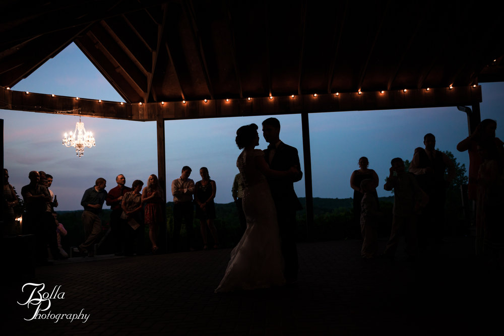 Bolla_photography_edwardsville_wedding_photographer_st_louis_weddings_Chaumette_winery_Mikusch-0561.jpg