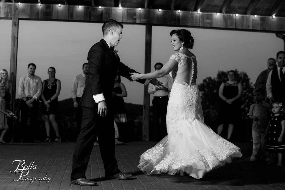 Bolla_photography_edwardsville_wedding_photographer_st_louis_weddings_Chaumette_winery_Mikusch-0578.jpg