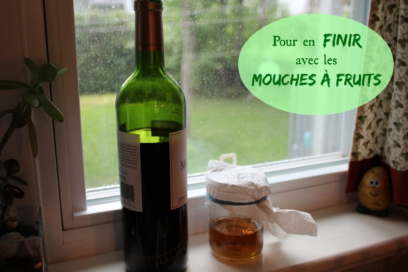 La bouteille de vin et le pot en vitre avec la bière.