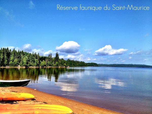 Cet été, j'ai eu le bonheur de visiter la  Réserve faunique du Saint-Maurice . Ce fut toute une expérience.