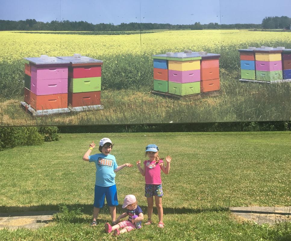 Intermiel-sortie en famille-enfants-abeilles-découverte-univers-miel-sortie éducative-concours-Je suis une maman