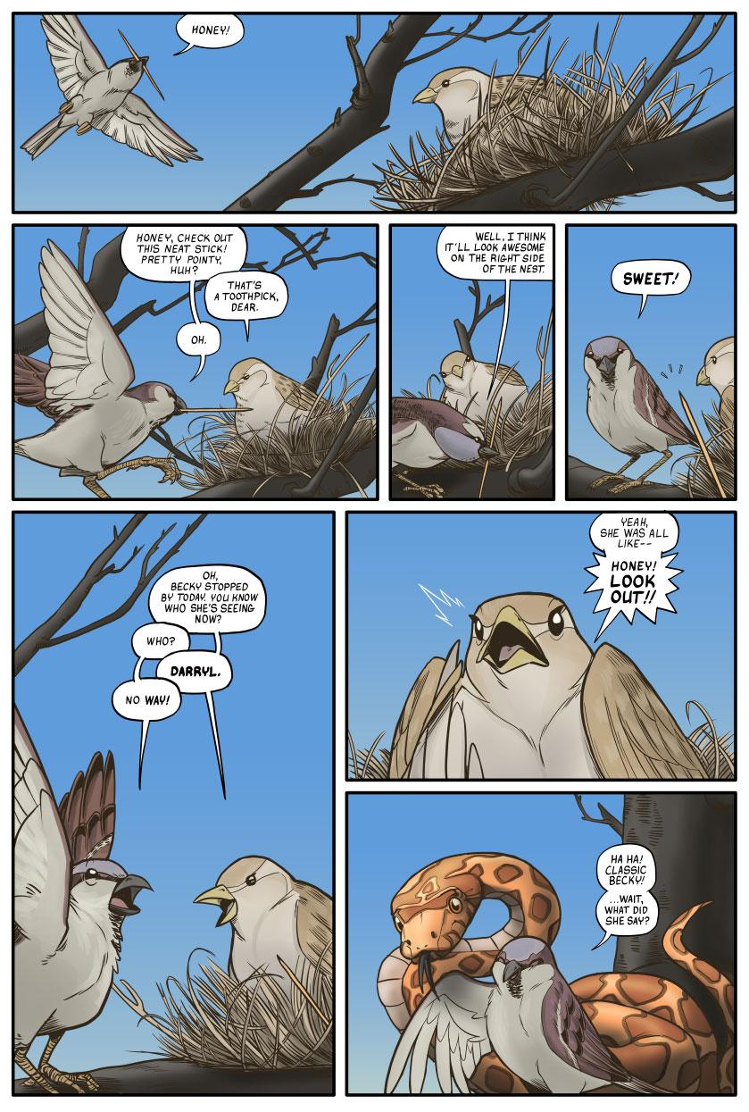 Birds Comic