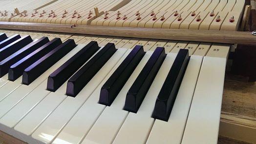 New Steinway M Keyboard