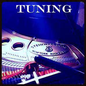 Click here  to learn more about our  piano tuning  services!