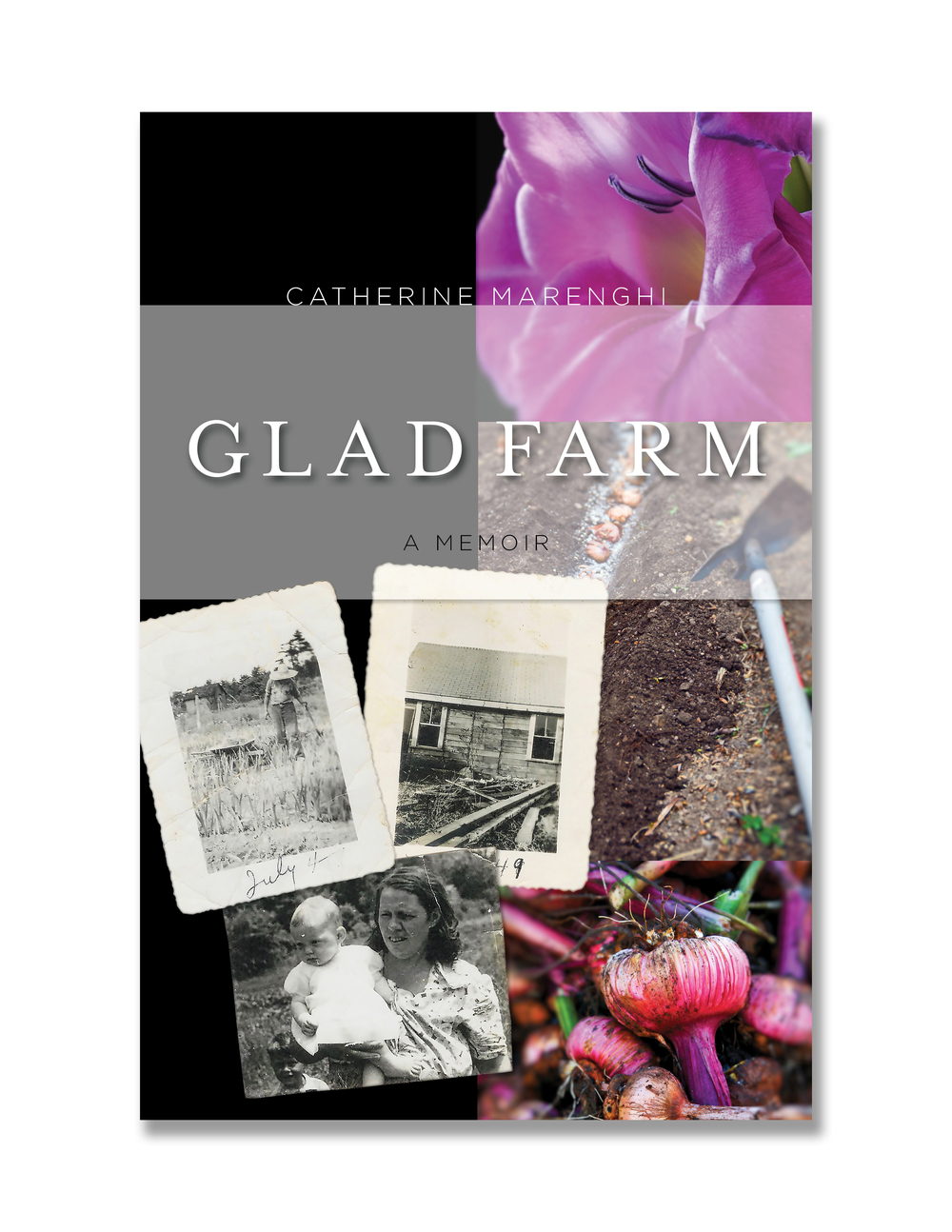 GLAD FARM: initial cover concept #2