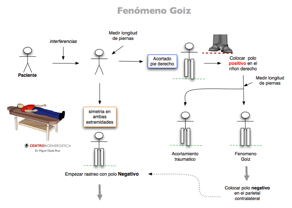 Técnica de rastreo — Microbioenergética