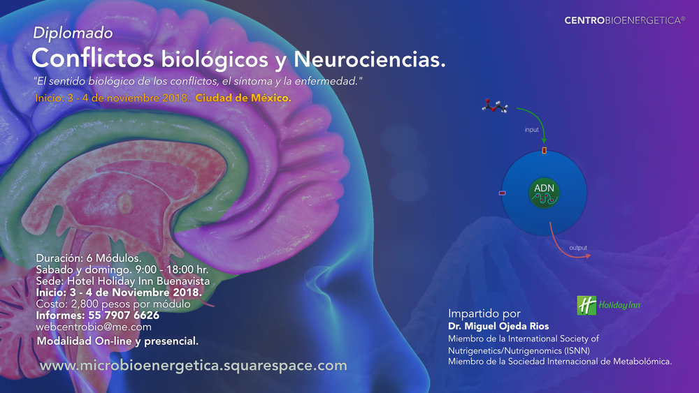 neurociencias.jpg