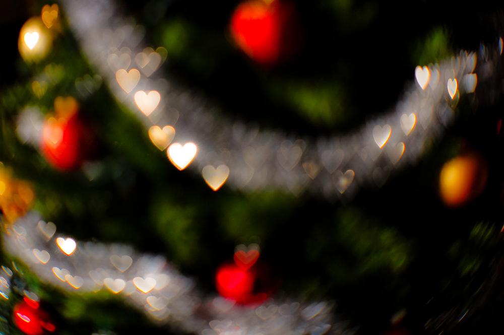 Xmas Tree 2008