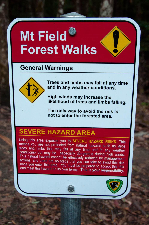Mt Field National Park Forest Walks, Tasmania