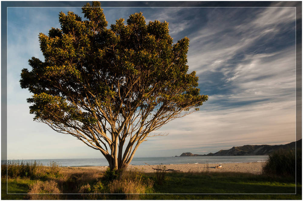 """Tokomaru Bay"" New Zealand"