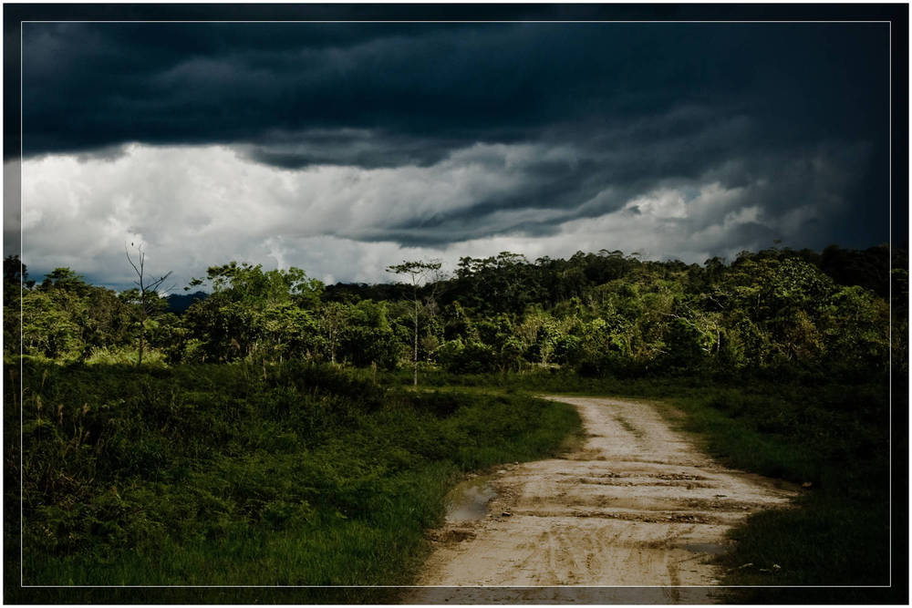 """Storm Over Bario"""