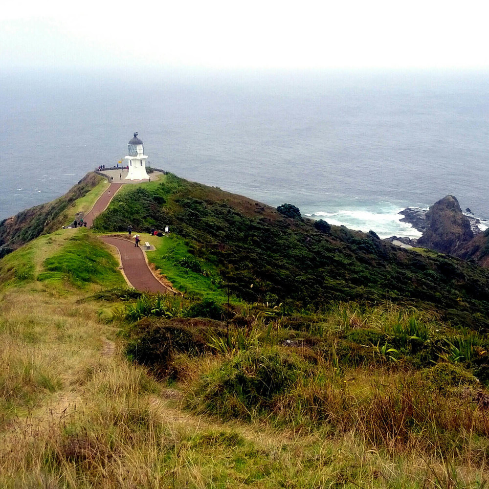Cape Reinga, the northern tip of New Zealand.