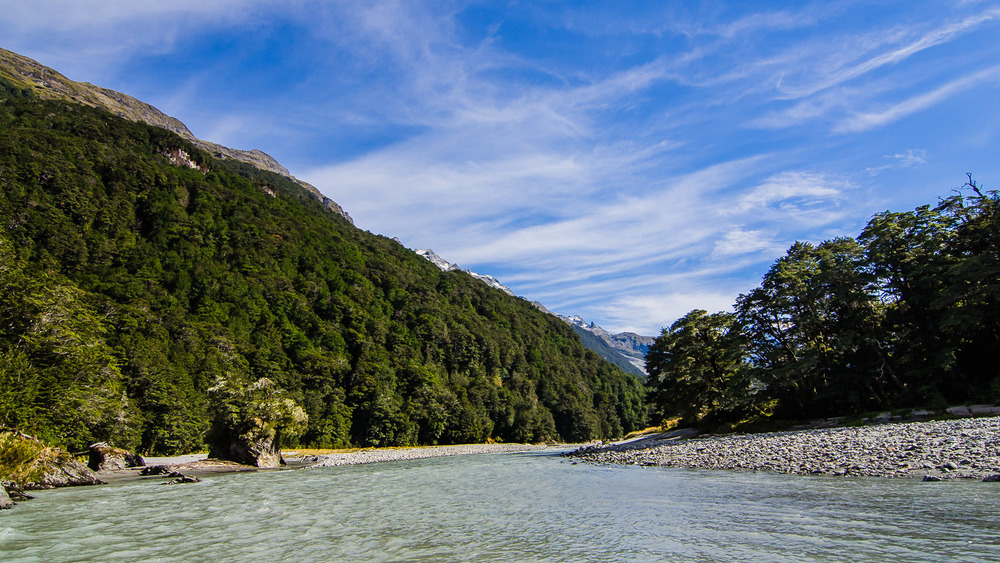 Dart River © Dustin Main 2013