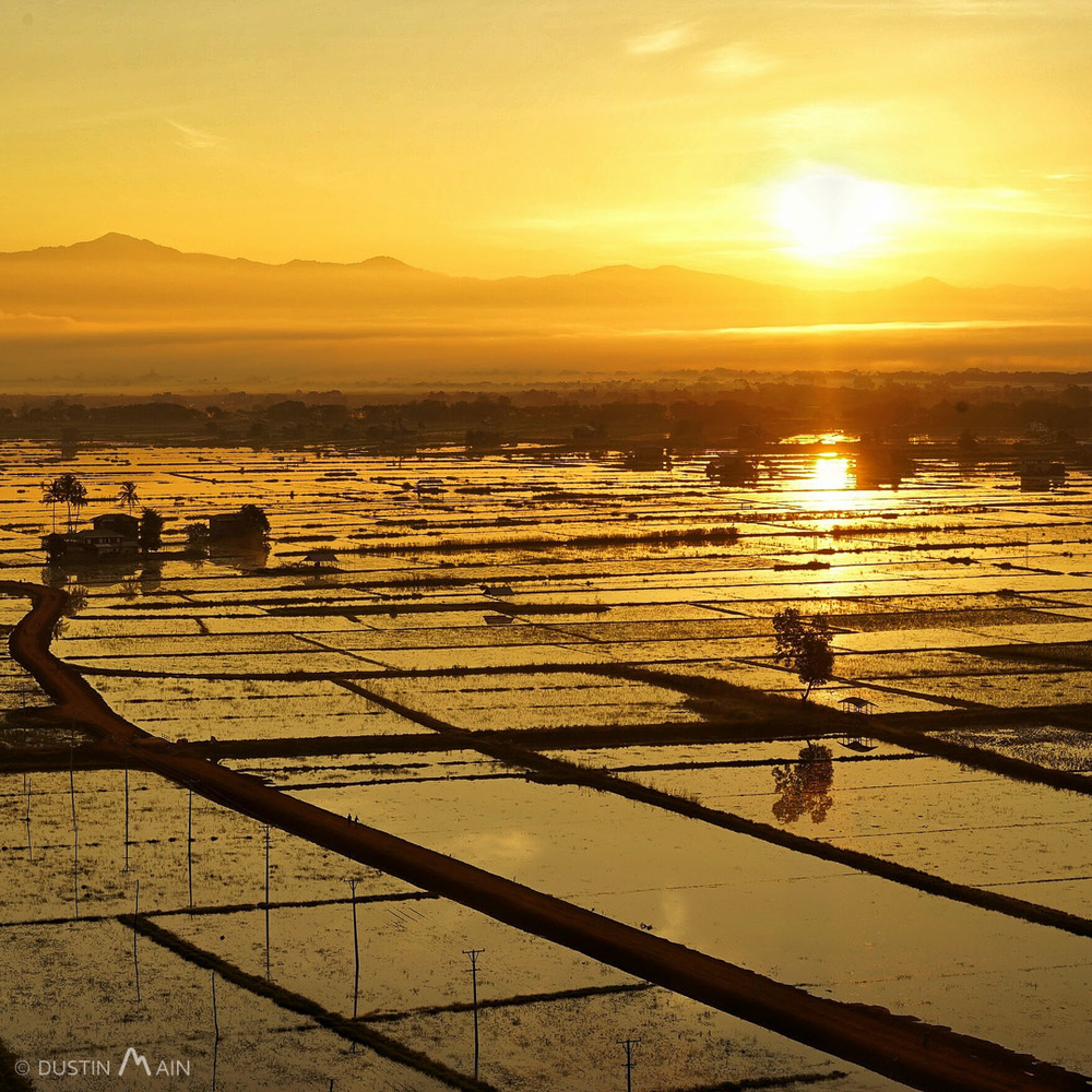 The glowing sun reflecting in the patties at Inle Lake.  Shan State, Myanmar (Burma)  © Dustin Main 2015