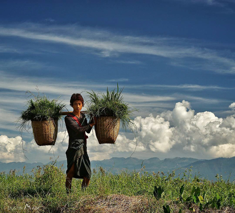 Cleaning the crops.  Inle Lake, Myanmar (Burma) © Dustin Main 2015