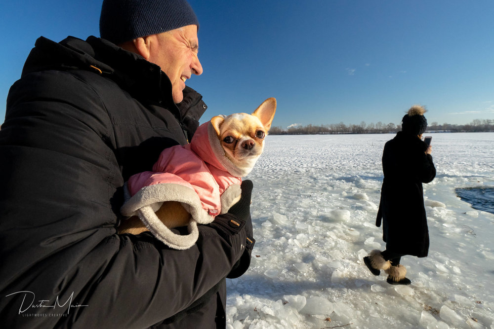 Small dog dressed for success on a winters day in Ukraine. © Dustin Main 2019