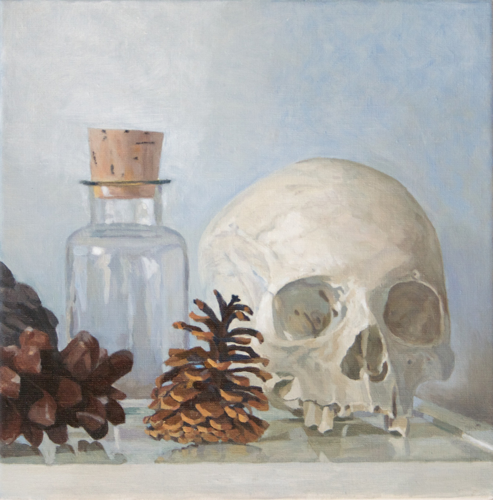 Skull, Pine cones and Bottle, 2012 Oil on linen, 12 x 12 inches $800 + HST. Contemporary steel reveal frame, silver-gold, 2 inch height , 1/4 inch width.