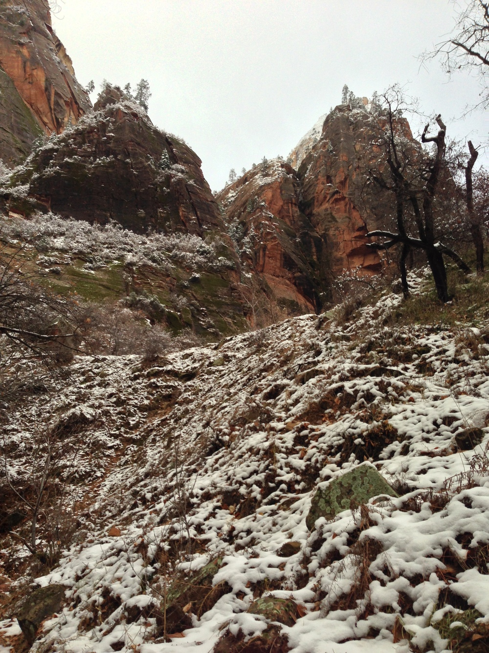 Heading up the trail toward Hidden Canyon