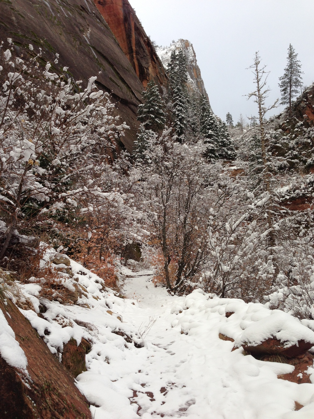 Almost at the Hidden Canyon turnoff - good snow coverage on the trail. Photo shot December 2012.