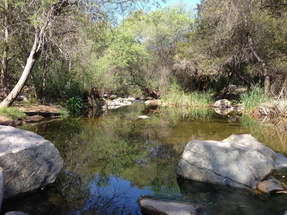 Crossing Escondido Creek, Elfin Forest