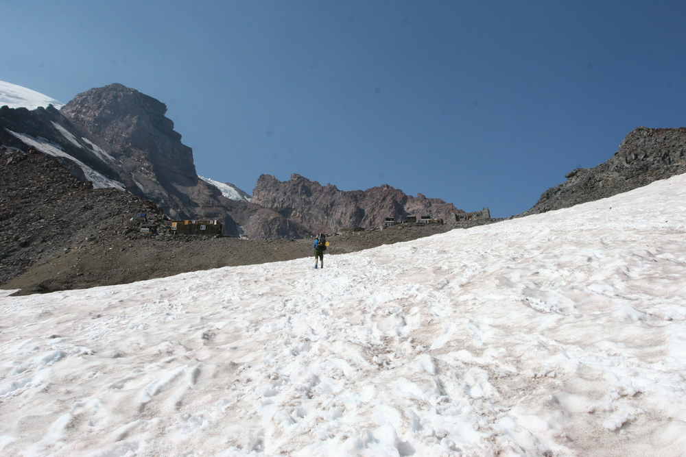 Muir Snowfield, Mt. Rainier