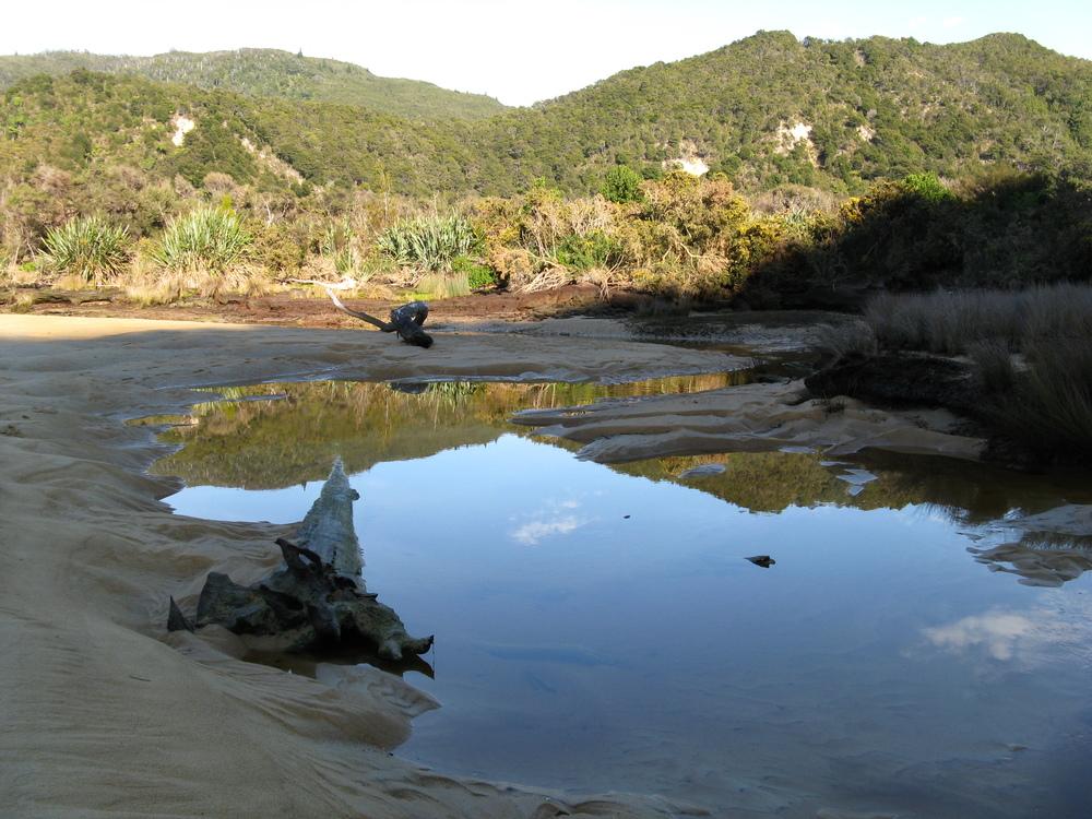 Onetahuti Estuary