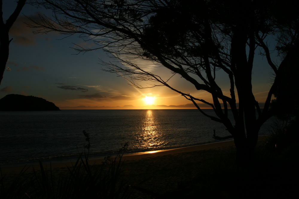 Sunrise, Tonga Quarry Campground, Coast Track, Abel Tasman National Park