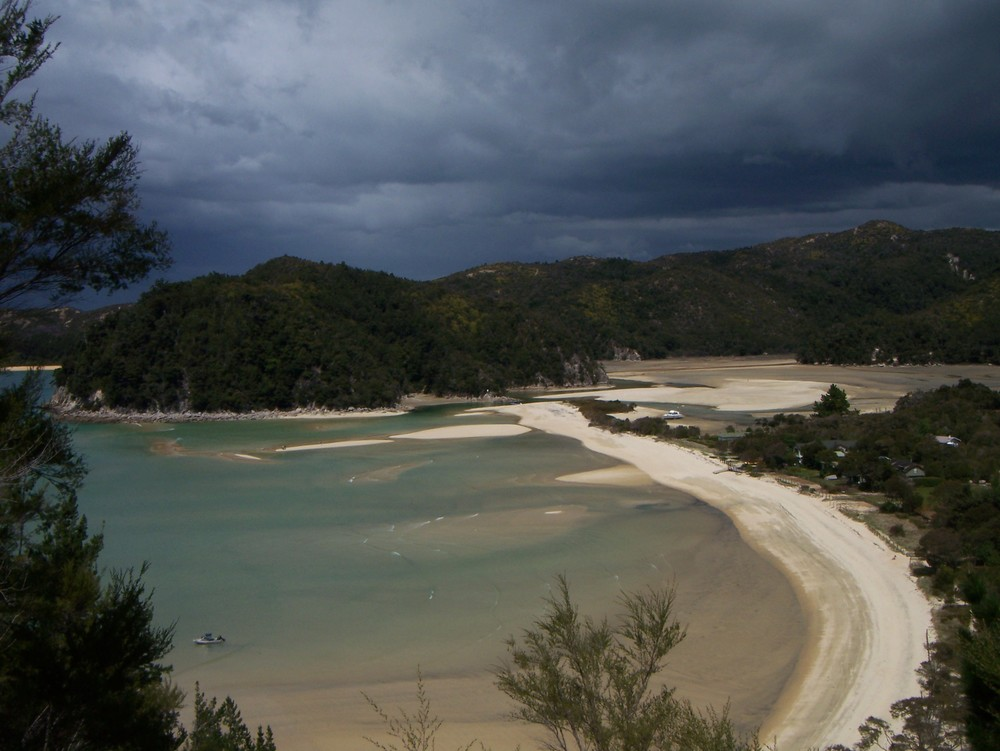Looking down at Torrent Bay, Coast Track, Abel Tasman National Park (Low Tide)