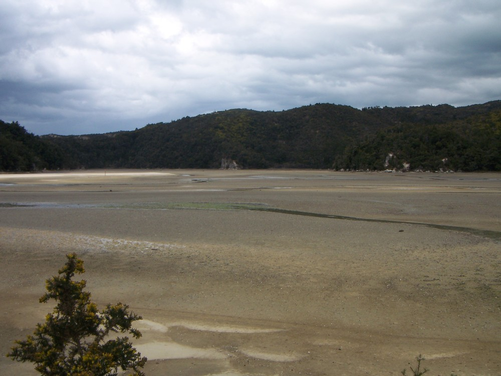 Torrent Bay, Coast Track, Abel Tasman National Park (Low Tide)