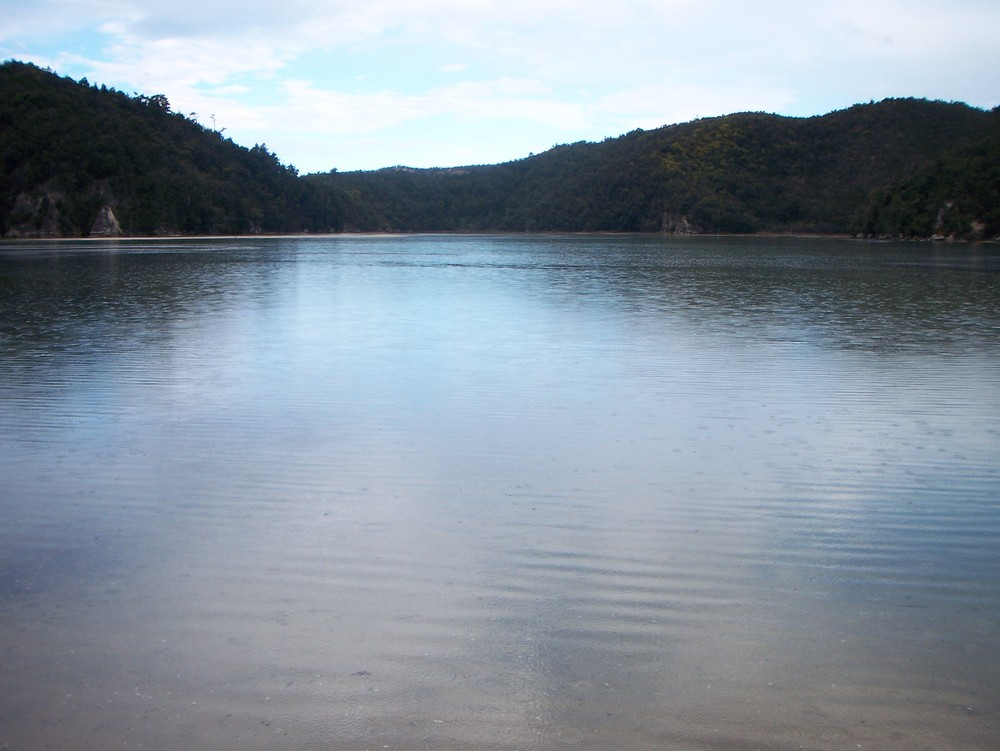 Torrent Bay, Coast Track, Abel Tasman National Park (HIGH TIDE)