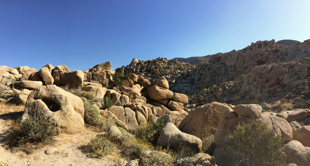Initial rocky ascent of Goat Canyon Trail, April 2015