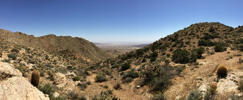 Plateau before Goat Canyon facing East toward trailhead, Anza Borrego Desert, April 2015