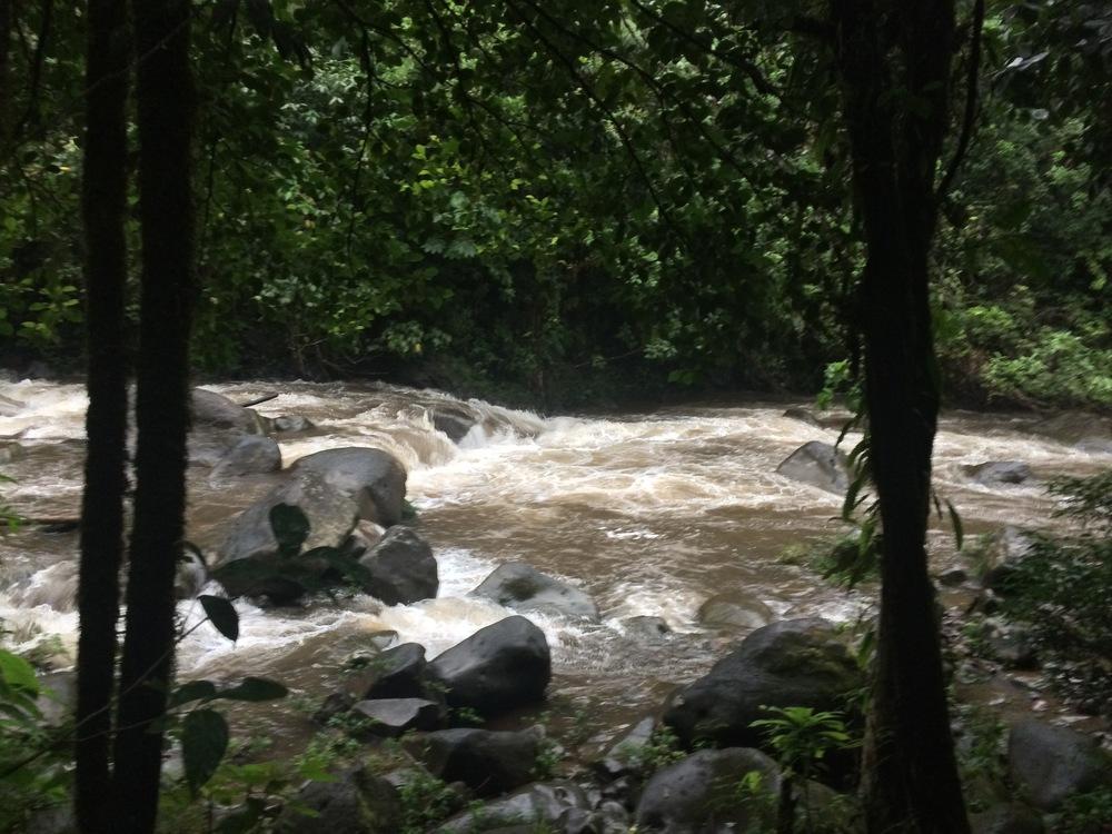 Rio Celeste after a downpour.