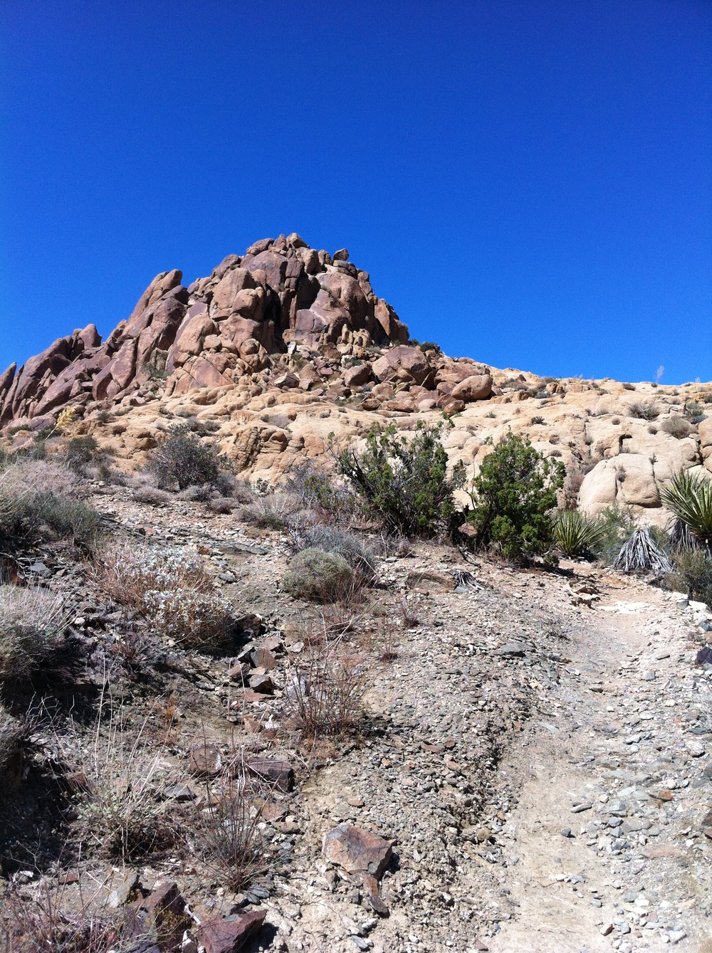 Mastodon Peak, Joshua Tree National Park