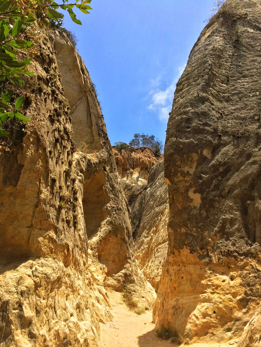 The restored canyon of the Annie's Canyon Trail