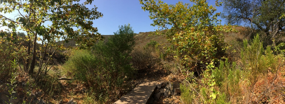 By taking the Five Peak Challenge, hikers will experience many different types of terrain in Mission Trails.